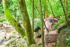 Eine Gruppe Touristen, die entlang einem Strom der tropischer Waldim üppigen Laub, -moos und -flechte in den Stämmen und in den F lizenzfreie stockfotografie