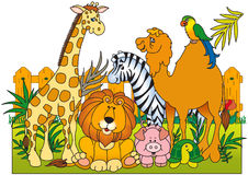 Eine Gruppe wilde Tiere Stockbilder