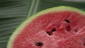 Eine Hälfte frisches rohes exotisches tropisches thailändisches Frucht watermeloncitrullus wolligen Drehens auf Bananenblatt stock video footage