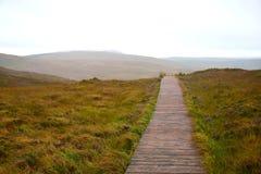 Eine h?lzerne Bahn durch den Nationalpark Connemara in Irland lizenzfreies stockfoto