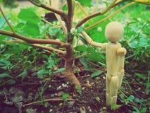 eine hölzerne Puppe Stockbilder