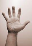 Eine Hand Stockbild