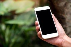 Eine Hand, die weißes intelligentes Telefon mit leerem schwarzem Tischplattenschirm in im Freien mit Unschärfegrün-Naturhintergru stockfotografie