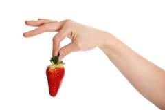 Eine Hand Frau hält eine Erdbeere an. Stockbild