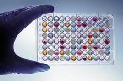Eine Hand mit einem microplate Stockbilder