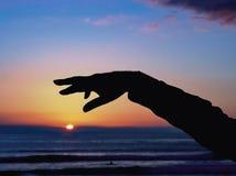 Eine Hand und ein Arm als schwarzes Schattenbild verbiegt hoch gegen den noch blauen Glättungshimmel über der Sonne lizenzfreie stockfotos