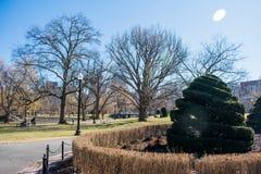 Eine Hecke mitten in einem Park lizenzfreie stockbilder