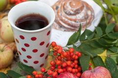 EINE helle Zusammensetzung A mit einer Schale starkem schwarzem Tee, süßen Brötchen mit Rosinen, Aschbeeren, Äpfeln und buntem He Lizenzfreie Stockfotografie