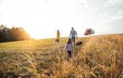 Eine hintere Ansicht der Familie mit Kind und einem Hund auf einem Weg in der Herbstnatur bei Sonnenuntergang lizenzfreie stockbilder