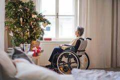 Eine hintere Ansicht einer älteren Frau im Rollstuhl zu Hause zur Weihnachtszeit lizenzfreies stockfoto
