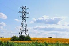 Eine Hochspannungslinie auf dem Gebiet von Sonnenblumen Stockfoto
