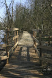 Eine Holzbrücke in einem Vorfrühlingswald, Belgien Stockfotografie
