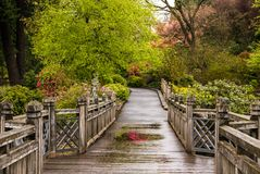 Eine Holzbrücke in Portland-` s Crystal Springs Rhododendron Garde Lizenzfreie Stockfotografie