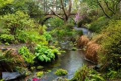 Eine Holzbrücke und ein Strom in Portland-` s Crystal Springs Rhodode Stockbilder