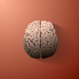 Eine Illustration des menschlichen Gehirns Lizenzfreies Stockfoto