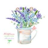 Eine Illustration mit einem Blumenstrauß der schönen blauen Myosotisblume, der Kornblumen und der Lavendelblumen in einem rustika Lizenzfreie Stockfotos