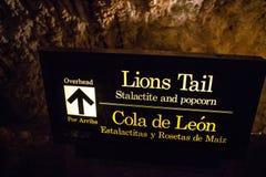 Eine innere Spur zum Karlsbad-Höhlen-Nationalpark stockfotografie
