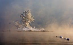 Eine Insel im Nebel stockfotos