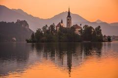 Eine Insel mit Kirche in ausgeblutetem See, Slowenien bei Sonnenaufgang lizenzfreie stockfotografie