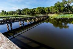 Eine interessante Perspektive eines hölzernen Fischen-Docks an einem Sommer-Tag. Stockbilder