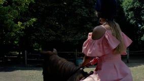 Eine Jugendliche in einem Schutzhelm und in einem rosa Kleid reitet ein braunes Pferd auf einen Hintergrund von Bäumen Weicher Fo stock video footage