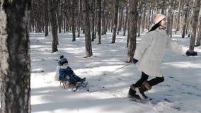 Eine junge aktive Mutter läuft unter den Tannen und zieht den Schlitten, auf dem ihr Kind sitzt stock footage