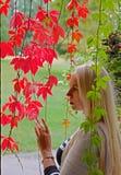 Eine junge blonde Frau mit rotem Autumn Leaves Lizenzfreies Stockfoto