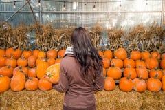 Eine junge Brunettefrau, die einen Kürbis vor einer Reihe von Kürbisen auf einem Bauernhof hält stockfoto