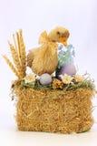 Eine junge Ente auf Stroh mit Eiern Stockfoto