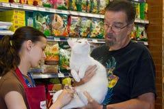 Eine junge Frau schneidet die Nägel einer weißen Katze. Stockbild