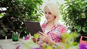 Eine junge Frau steht in einem Straßencafé auf einer gemütlichen grünen Terrasse still Benutzt eine Tablette stock footage