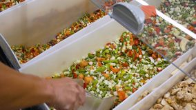 Eine junge Frau wählt grünes gefrorenes Gemüse am Supermarkt stock footage