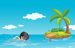Eine junge Herrschwimmen nahe einer kleinen Insel Stockfotografie