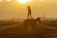 Eine junge mexikanische Herde Charro-Cowboy-Rounds Ups A von den Pferden, die durch The Field auf einer mexikanischen Ranch bei S lizenzfreie stockfotos