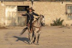 Eine junge mexikanische Herde Charro-Cowboy-Rounds Ups A von den Pferden, die durch The Field auf einer mexikanischen Ranch bei S lizenzfreie stockbilder