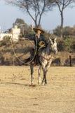 Eine junge mexikanische Herde Charro-Cowboy-Rounds Ups A von den Pferden, die durch The Field auf einer mexikanischen Ranch bei S lizenzfreies stockbild