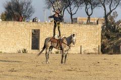Eine junge mexikanische Herde Charro-Cowboy-Rounds Ups A von den Pferden, die durch The Field auf einer mexikanischen Ranch bei S stockfotografie