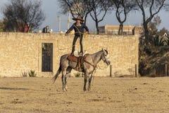Eine junge mexikanische Herde Charro-Cowboy-Rounds Ups A von den Pferden, die durch The Field auf einer mexikanischen Ranch bei S stockbild
