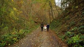 Eine junge Mutter mit ihren zwei Kinderwegen durch den Herbstwald, den sie entlang den Waldweg gehen Sie sind glücklich stock video footage
