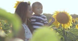 Eine junge Mutter und ein Sohn berühren eine Sonnenblume auf einem großen Feld stock footage