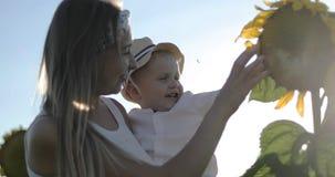 Eine junge Mutter und ein Sohn berühren eine Sonnenblume auf einem großen Feld stock video footage