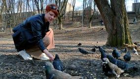 Eine junge Rothaarigefrau mit einem kurzen Haarschnitt zieht eine Menge von Tauben von den Händen im Park im Frühjahr ein stock video footage