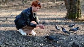 Eine junge Rothaarigefrau mit einem kurzen Haarschnitt zieht eine Menge von Tauben von den H?nden im Park im Fr?hjahr ein stock video