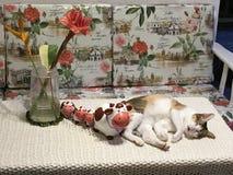 Eine Kalikokatze, die nahe bei 4 keramischen Kühen schläft stockfotografie