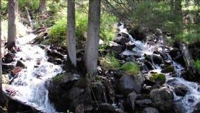 Eine Kaskade von kleinen Wasserfällen auf dem Fluss Boci, fließend von den Bergen stock video