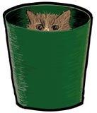 Eine Katze in einem Behälter stockbilder