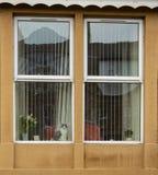 Eine Katze starrt aus dem Fenster heraus an und passt die Welt auf, vorbei zu gehen lizenzfreies stockfoto