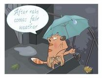 Eine Katze und Comics eines Regens Stockbilder