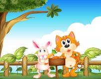 Eine Katze und ein Kaninchen nahe dem leeren hölzernen Schild Stockfotografie