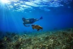 Eine Kerlschwimmen mit der Schildkröte Unterwasser lizenzfreie stockbilder